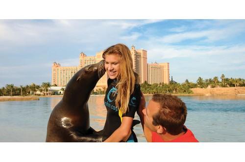 Galveston Cruises Atlantis Sea Lion Interaction With