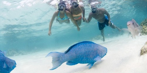 De Palm Island Beach Snorkel
