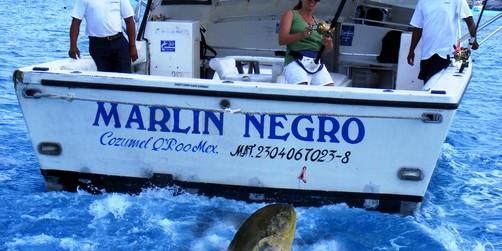 Galveston cruises deep sea fishing excursions for Deep sea fishing galveston