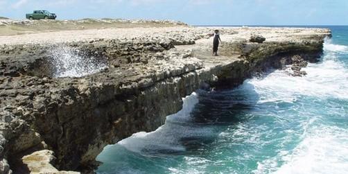 Galveston Cruises Devil S Bridge Amp Beach Excursions
