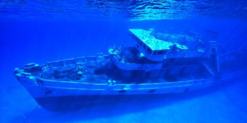 Galveston Cruises Uss Kittiwake Sunken Ship Amp Reef