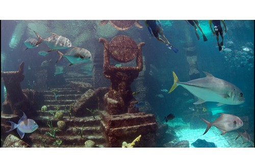 Snorkel The Ruins Of Atlantis With Beach Day